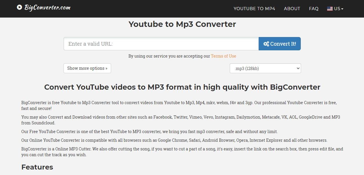 BigConverter YouTube to Mp3 Converter Online